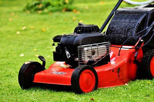 Ein Rasenmäher erleichtert die Rasenpflege ungemein und ist heute nicht mehr wegzudenken