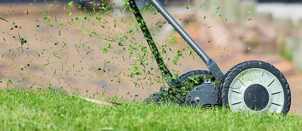 Rasenpflege mit dem Spindelmäher