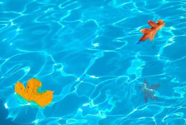 Zum Badespaß im eigenen Pool gehört auch die regelmäßige Poolreinigung