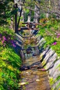 Ein Wasserlauf - Bauchlauf - kann im eigenen Garten angelegt werden