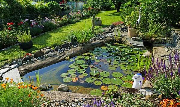 Ein Gartenteich - ein Element im Wassergarten
