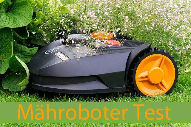 Maehroboter-Test